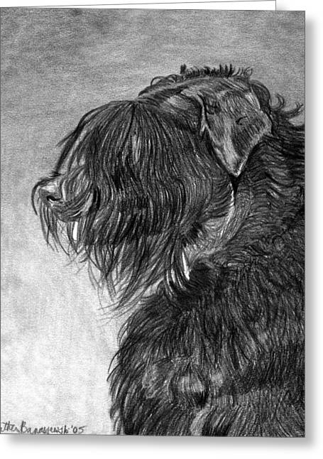 Black Russian Terrier Dog Portrait  Greeting Card by Olde Time  Mercantile