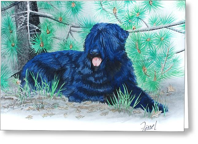 Black Russian Terrier Greeting Card by Ferrel Cordle