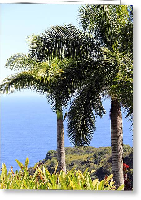 Black Sand Beach Lookout Greeting Card
