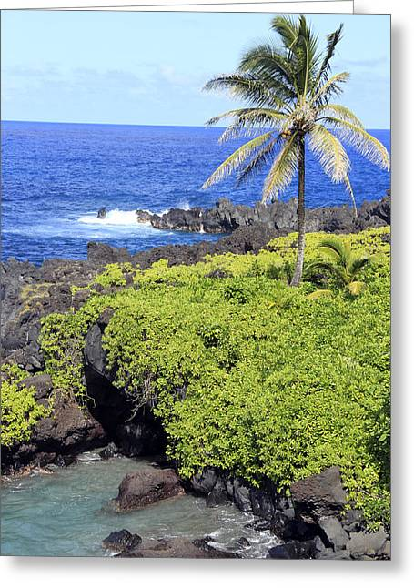 Black Sand Beach Lookout Park Greeting Card