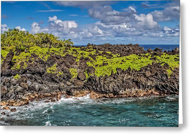 Black Sand Beach Maui Hawaii Greeting Card by Edward Fielding