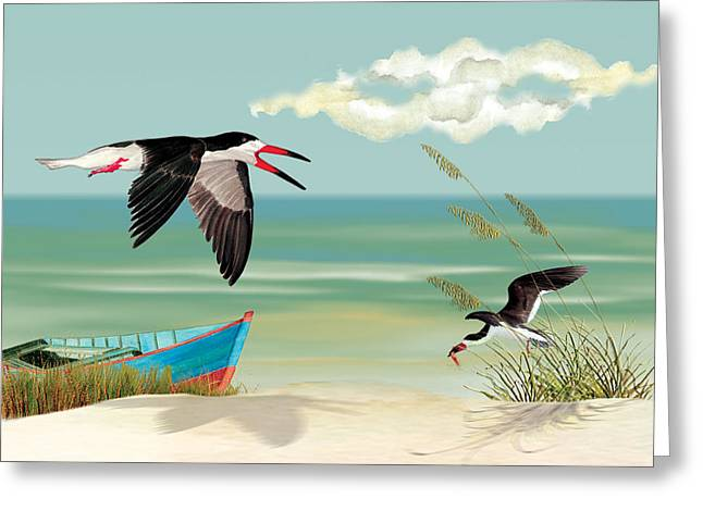 Black Skimmers Fishing Greeting Card