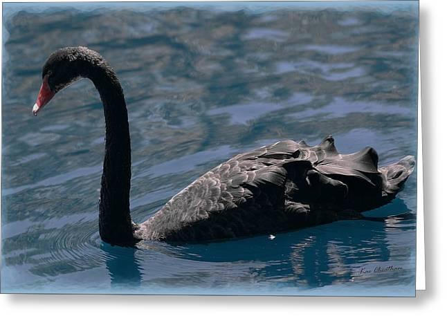 Black Swan Greeting Card by Kae Cheatham