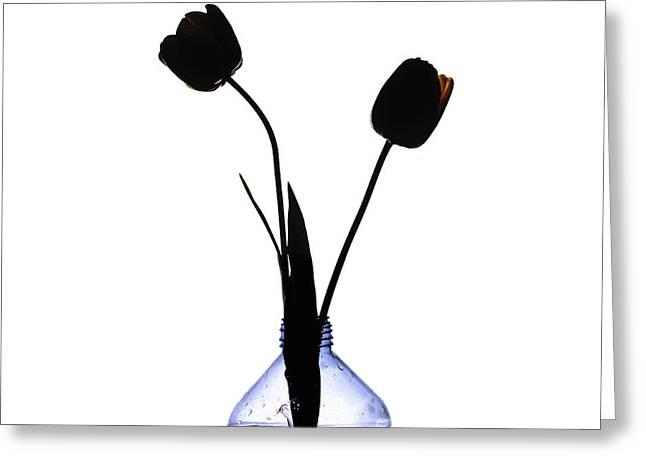 Black Tulips Greeting Card by Bernard Jaubert