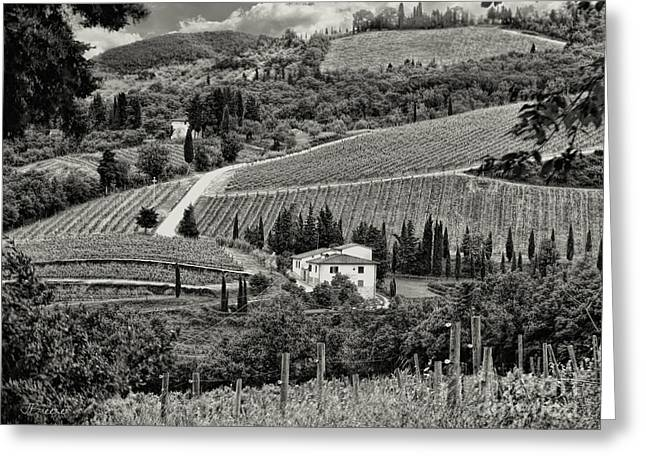 Black White Tuscan Countryside Greeting Card by Jennie Breeze