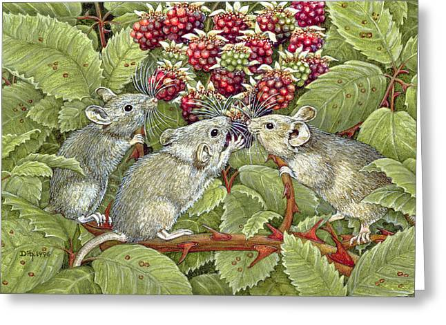 Blackberrying Greeting Card by Ditz