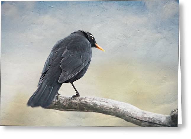 Blackbird Greeting Card by Heike Hultsch