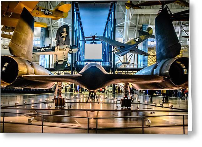 Blackbird Rear View Greeting Card by Randy Scherkenbach