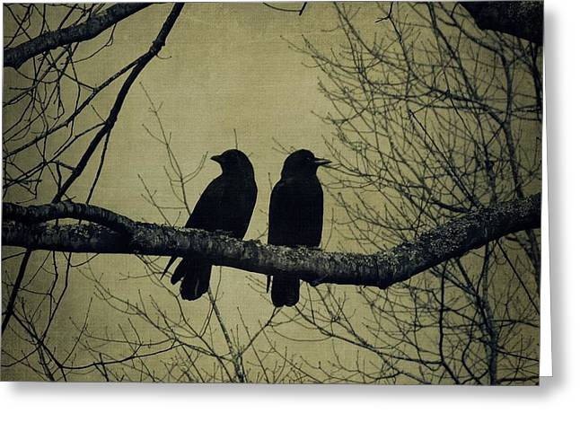 Blackbirds On A Branch Greeting Card