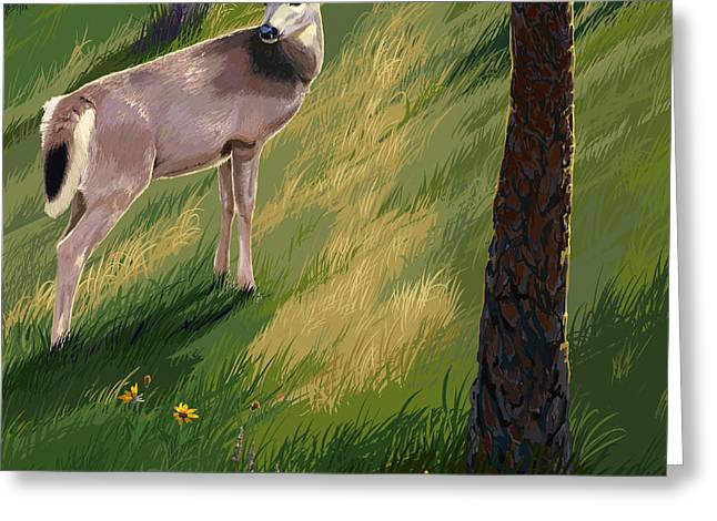 Blacktail Doe In Springtime Greeting Card