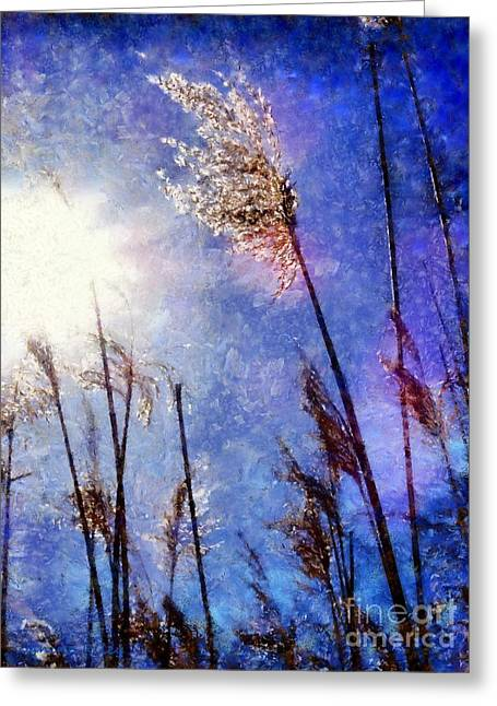 Blades Of Glory Marsh Grass Greeting Card by Janine Riley