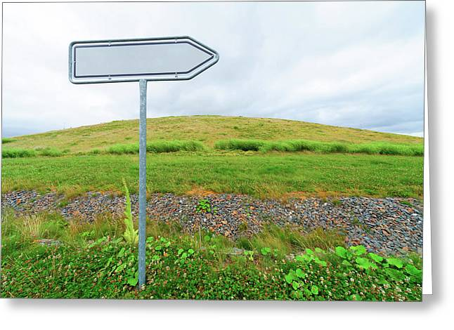 Blank Directional Sign In A Field Greeting Card by Wladimir Bulgar