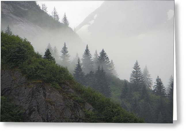 Blanket Of Fog Greeting Card by Jennifer Wheatley Wolf