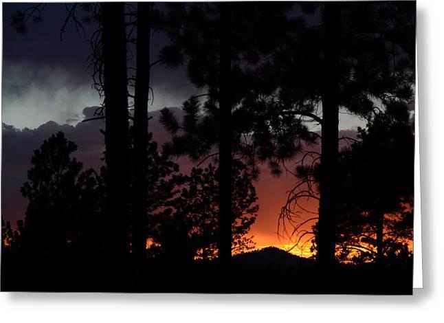 Blazing Black Hills Sunset Greeting Card by Dakota Light Photography By Dakota