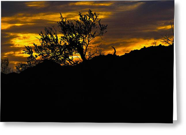 Blazing Sunset Greeting Card