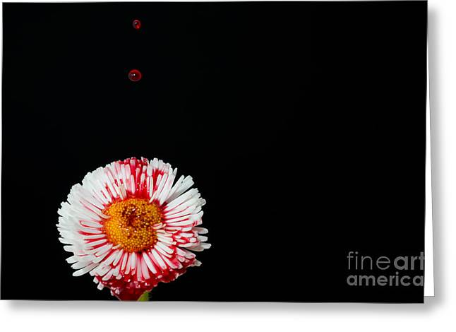 Bleeding Flower Greeting Card
