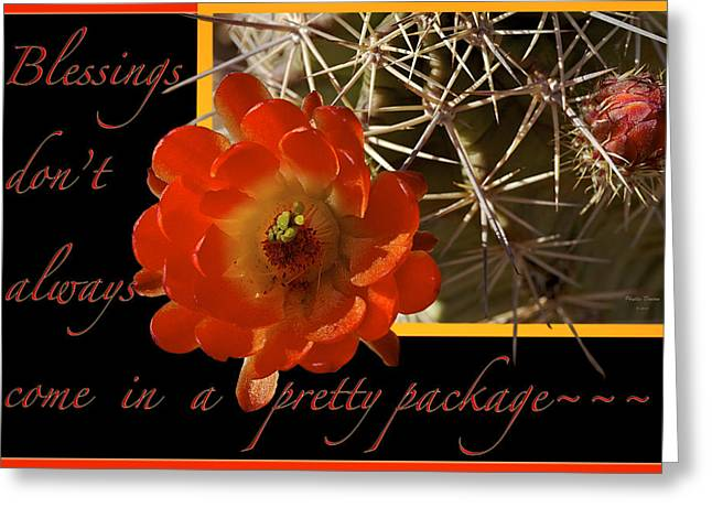 Blessings Greeting Card by Phyllis Denton