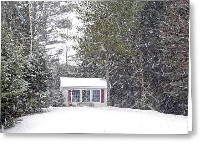 Greeting Card featuring the photograph Blizzard Of 2013 Begins by Barbara West