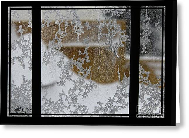 Blizzard Triptych - Snow Storm - Abstract Snow Pattern  Greeting Card by Barbara Griffin