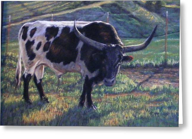 Blk And White Longhorn Steer Greeting Card