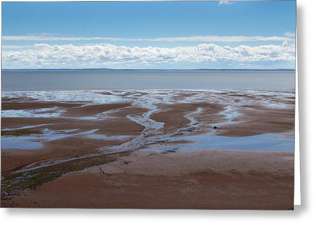 Blomiden Park On The Minas Basin In The Bay Of Fundy Greeting Card by Barbara Eckstein