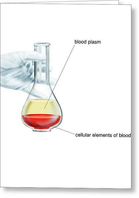 Blood Fractionation Greeting Card