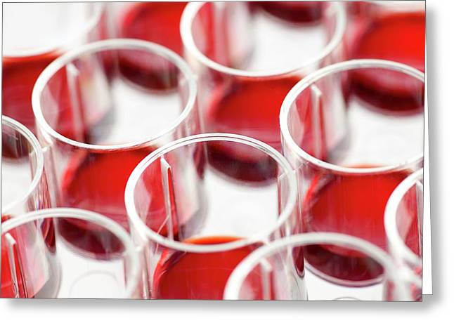 Blood In Multiwell Tray Greeting Card