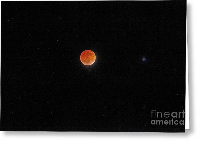 Greeting Card featuring the photograph Blood Moon And Stars by Martin Konopacki