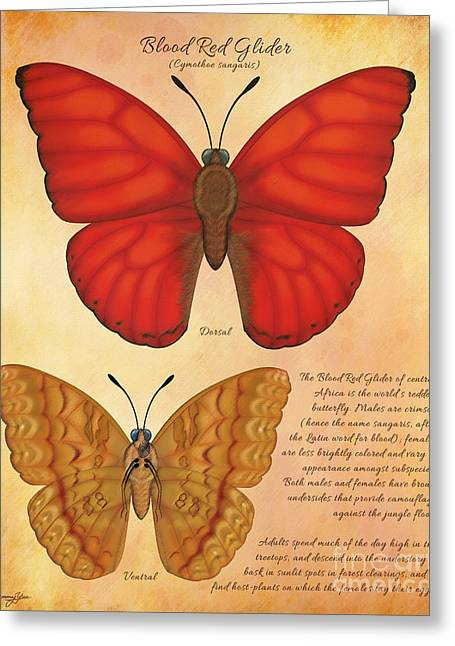Blood Red Glider Butterfly Greeting Card by Tammy Yee
