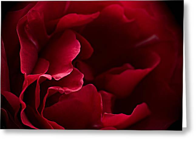 Blood Red Greeting Card by Jacqi Elmslie