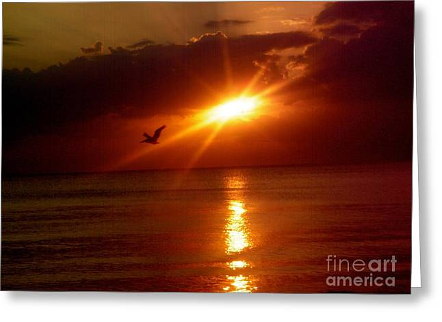 Blood Red Sunset Greeting Card by Carla Carson