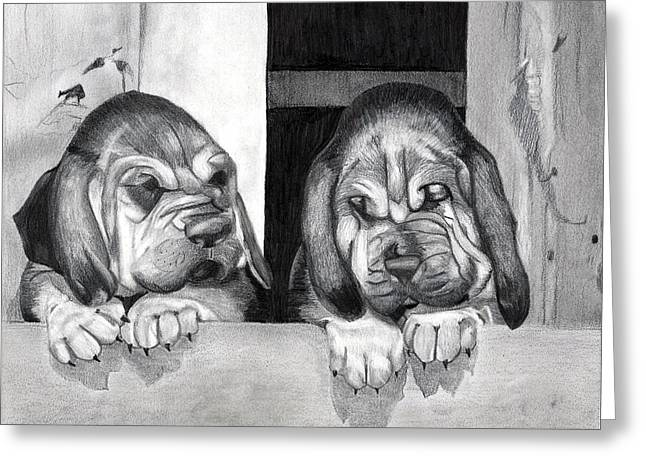 Bloodhound Puppies Dog Portrait  Greeting Card by Olde Time  Mercantile