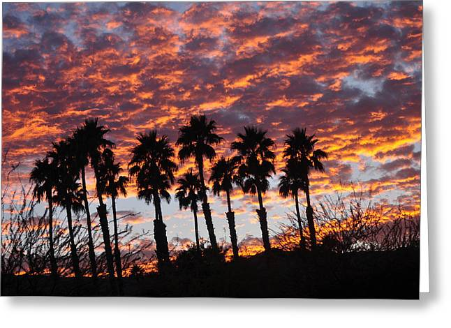 Bloody Sunset Over The Desert Greeting Card