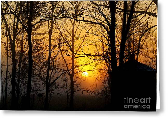 Bloom II Morning Mist Sunrise Greeting Card