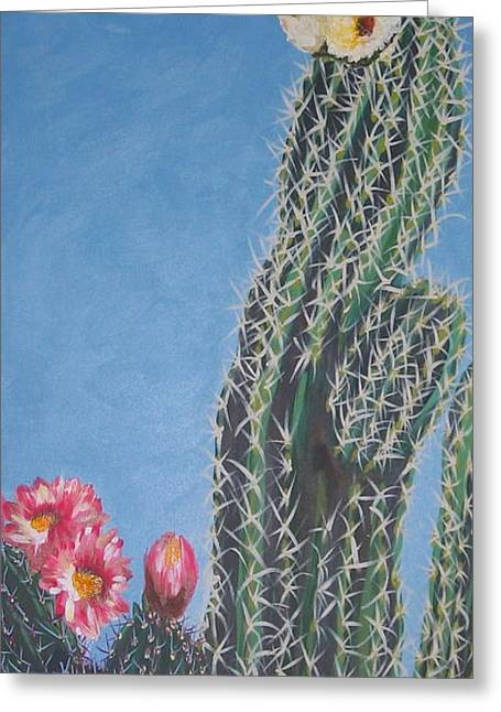Bloomin Cactus Greeting Card by Marcia Weller-Wenbert
