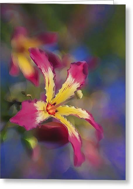 Bloomin Hong Kong Orchid Greeting Card