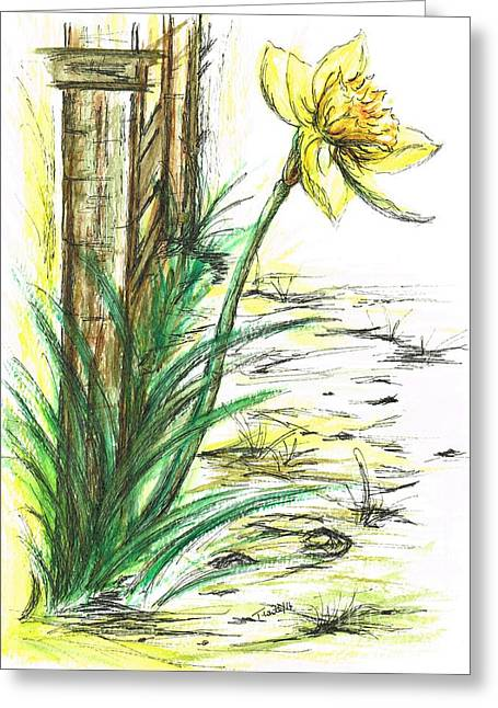 Blooming Daffodil Greeting Card by Teresa White