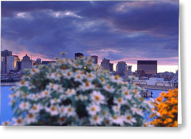 Blooming Flowers With City Skyline Greeting Card