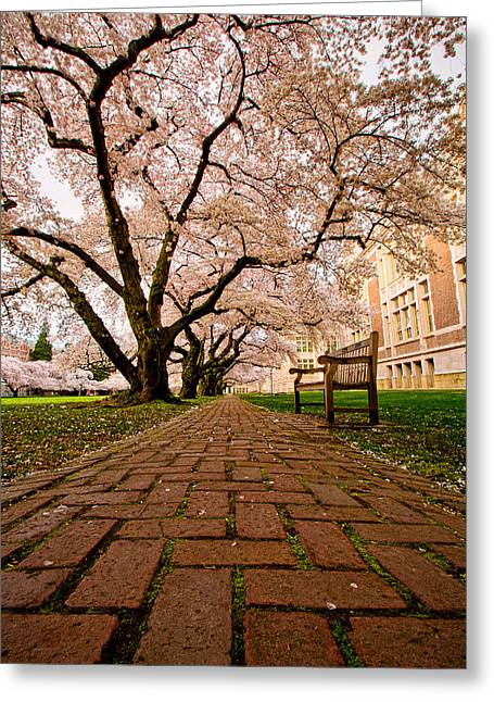 Blooming Giants Greeting Card