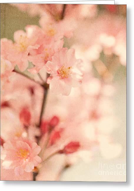 Blooming Season Greeting Card by Kim Fearheiley