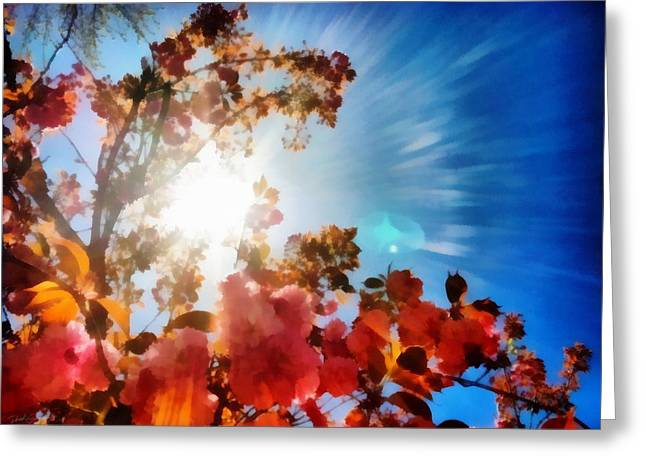 Blooming Sunlight Greeting Card