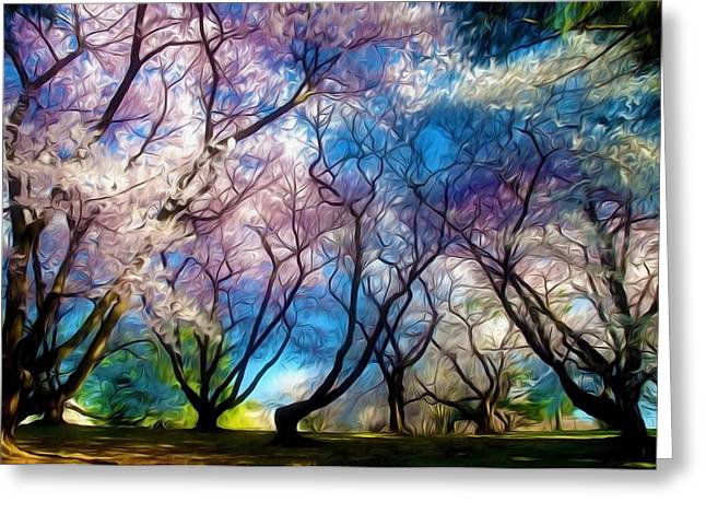 Blossom Cherry Trees Over Spring Sky Greeting Card by Lanjee Chee