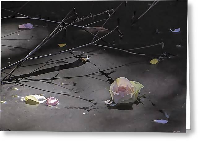 Blossom Rain 17 Greeting Card by Georg Kickinger
