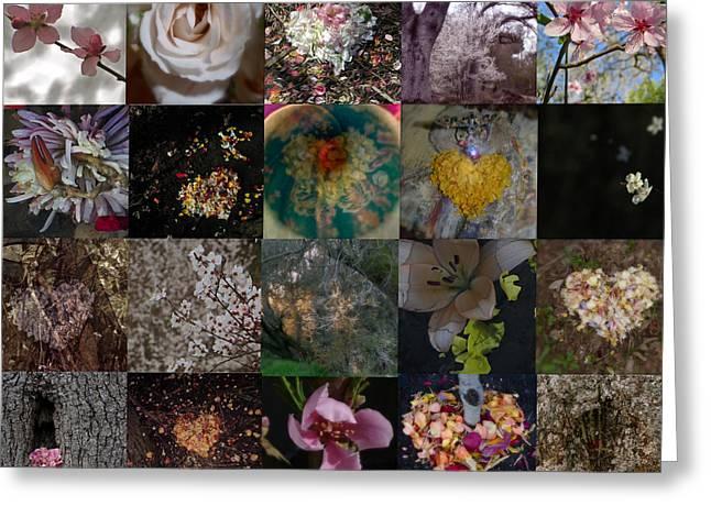 Blossom Rain I Greeting Card by Georg Kickinger