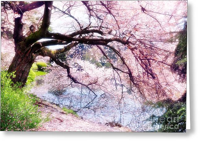 Blossoming Cherry Tree Touching Water Greeting Card