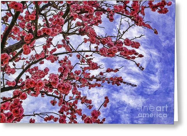 Blossoming Greeting Card by Nancy Marie Ricketts