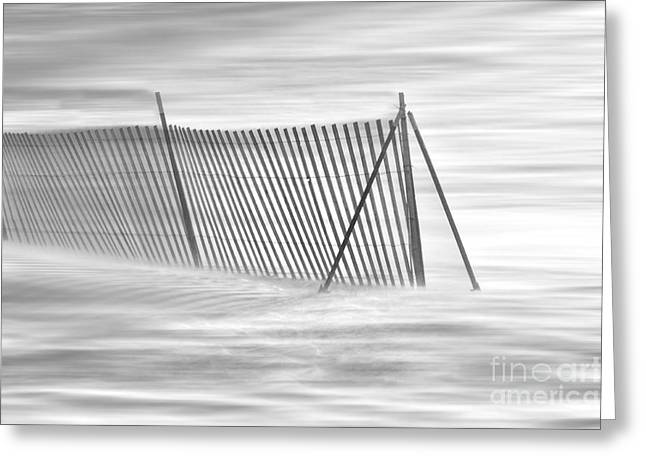 Blowing Snow At Snow Fence  Greeting Card by Dan Friend