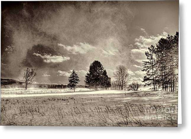Blowing Snow Canaan Valley Greeting Card by Dan Friend