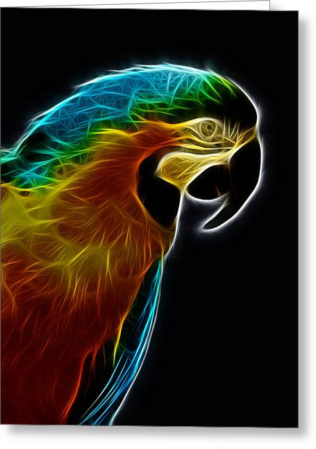 Blue And Gold Macaw Frac Greeting Card by Bill Barber