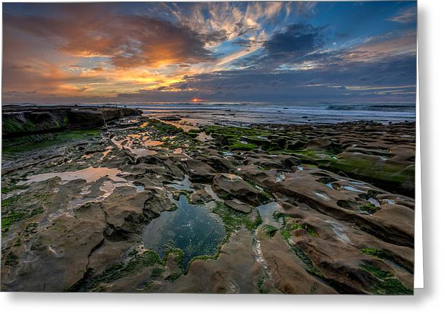 Blue And Gold Tidepools Greeting Card by Peter Tellone